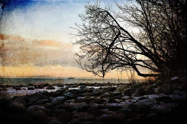 Photograph - A Walk At Sunset by Randi Grace Nilsberg