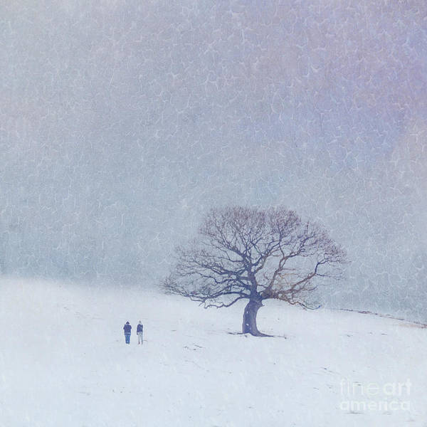 Wall Art - Photograph - A Walk In The Snow by Lyn Randle