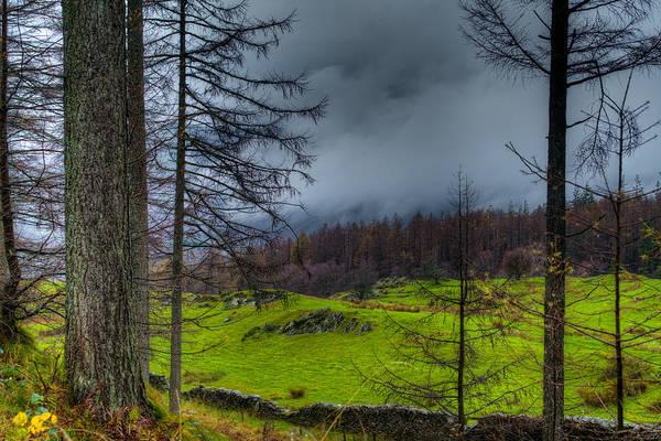 Photograph - A Walk Through The Lake District by Dennis Dame