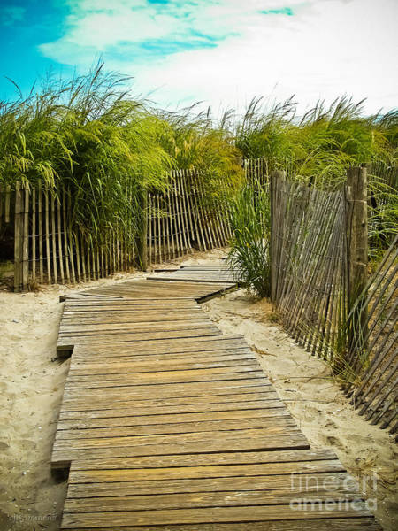 Kammerer Wall Art - Photograph - A Walk To The Beach by Colleen Kammerer