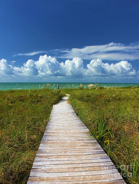 Photograph - A Walk To The Beach On Sanibel by Jeff Breiman