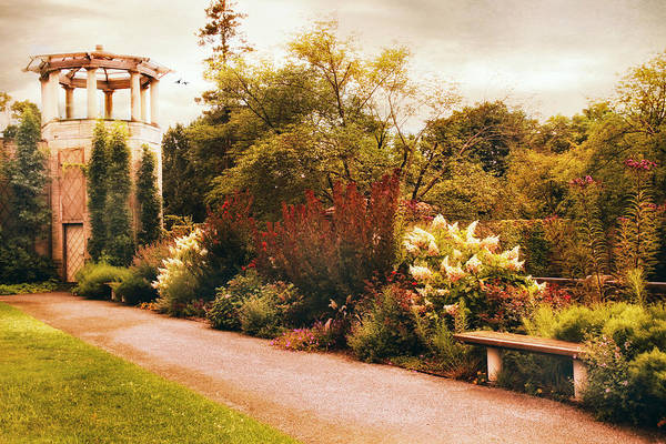 Photograph - A Walled Garden by Jessica Jenney