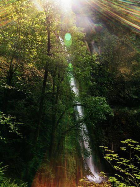 Wall Art - Photograph - A Waterfall On The Pacific Crest Trail by Ron Koeberer