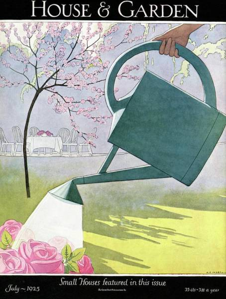 Outdoor Photograph - A Watering Can Above Pink Roses by Andre E Marty