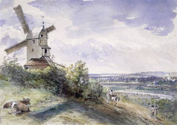 Cart Drawing - A Windmill At Stoke By Nayland by John Constable