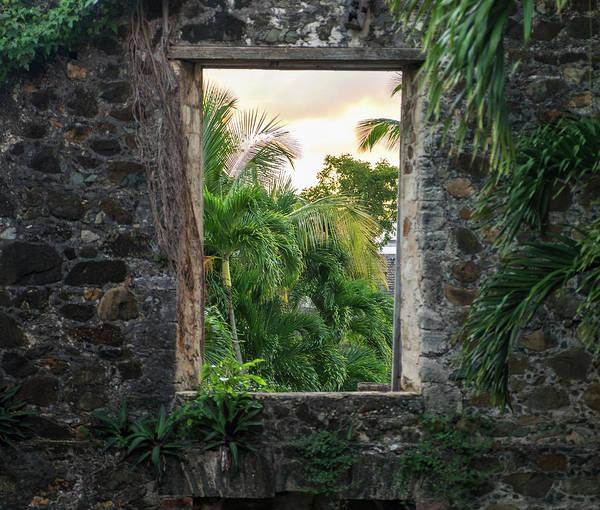 Wall Art - Photograph - A Window From Within Sugarmill Ruins by Jonathan Irish