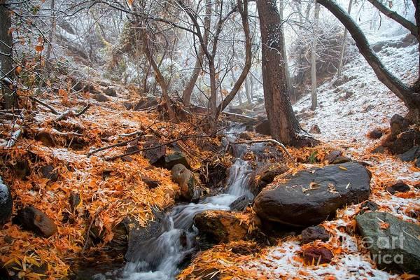 A Winter Scene In Jerome Arizona Art Print