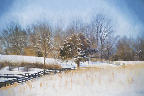 Wall Art - Photograph - A Winter Scene by Kathy Jennings