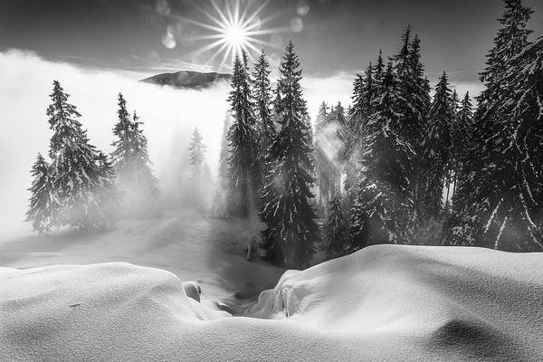 Cloudy Photograph - A Winter Tale ! by Sorin Onisor