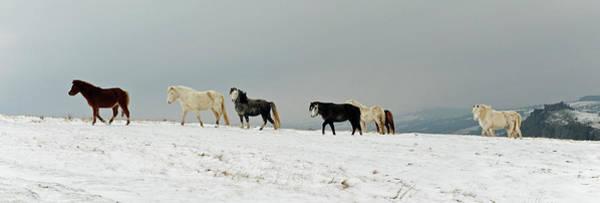 Wall Art - Photograph - A Winters Day Near Carreg Cennen by John B R Davies