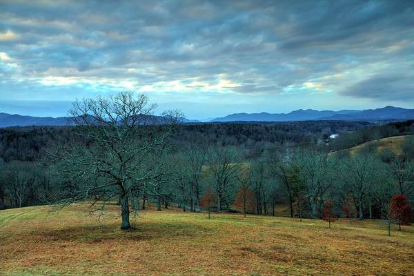 Photograph - A Winters Day Without Snow by Carol Montoya