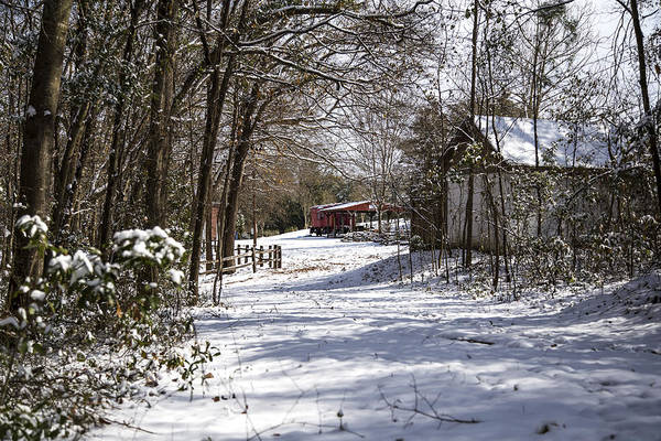 Photograph - A Wintry Walk  by Charles Hite