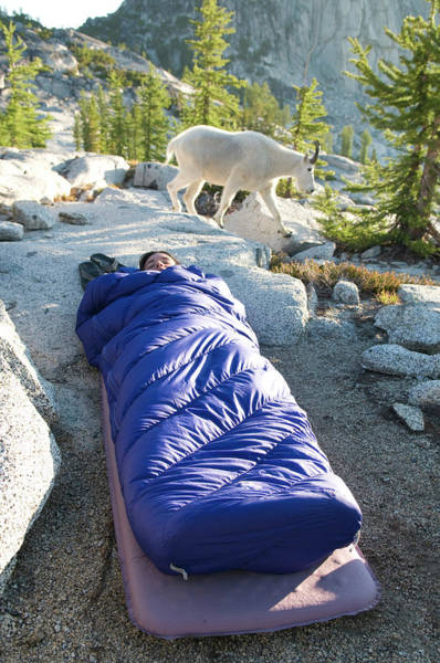 Goat Rocks Wilderness Wall Art - Photograph - A Woman Asleep In Her Sleeping Bag by Kennan Harvey