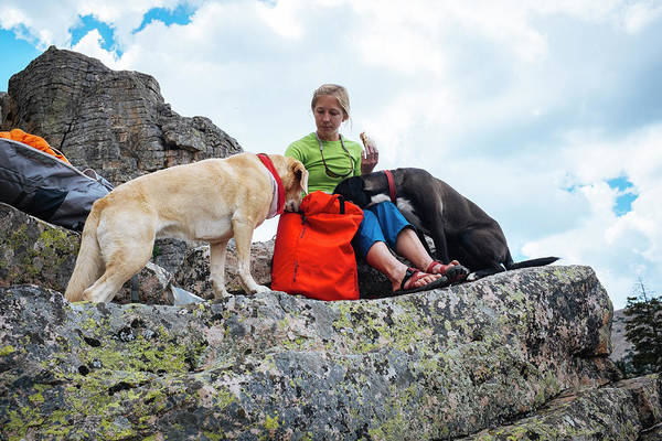 Uinta Photograph - A Woman Sharing Her Lunch With Her K9 by Mike Schirf