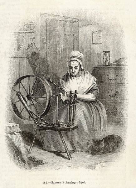 Wall Art - Drawing - A Woman Spins Wool On A 'saxony'  Type by Mary Evans Picture Library