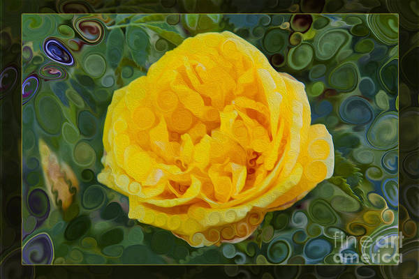 Painting - A Yellow Rose Abstract Painting by Omaste Witkowski