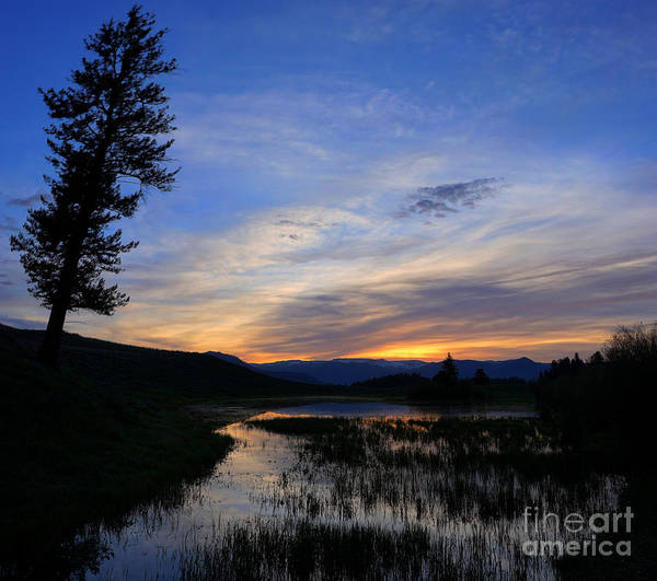 Photograph - A Yellowstone Lake Before Sunrise by Bill Gabbert