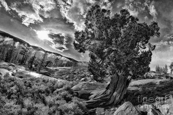 Photograph - A Yosemite Evening by Blake Richards