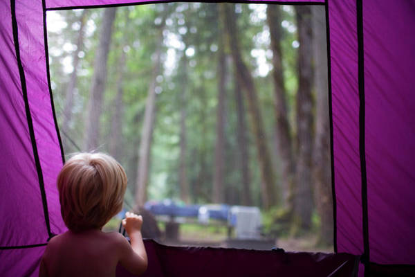 Wall Art - Photograph - A Young Boy Looks Out Of A Tent by Jan Sonnenmair