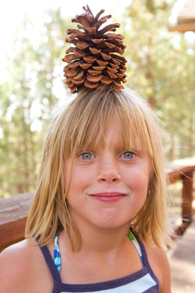 Big Pine Wall Art - Photograph - A Young Girl With A Pine Cone by Ty Milford