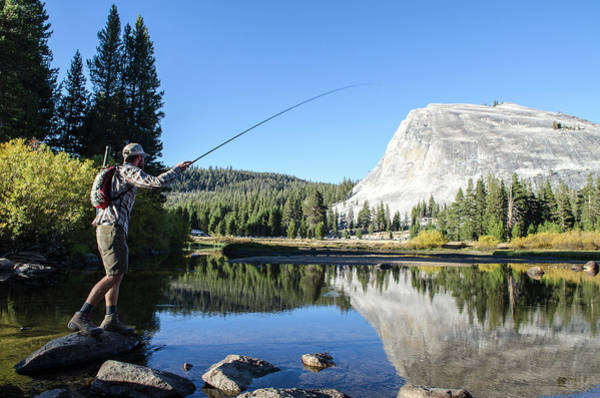 Wall Art - Photograph - A Young Man Fly-fishes In Tuolumne by Keri Oberly