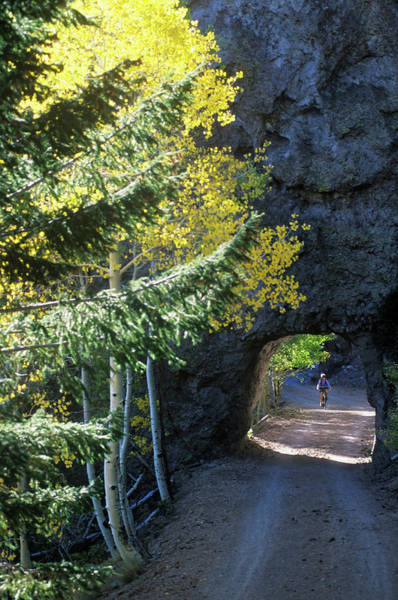 Flagstaff Photograph - A Young Woman Pedals Her Mountain Bike by Kyle George