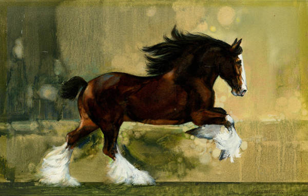In Motion Painting - Clydesdale Stallion by Don  Langeneckert