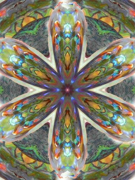 Digital Art - Abalone Christ Mandala by Diane Lynn Hix