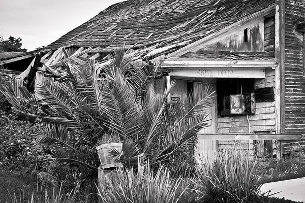 Photograph - Abandoned Alviso by Priya Ghose