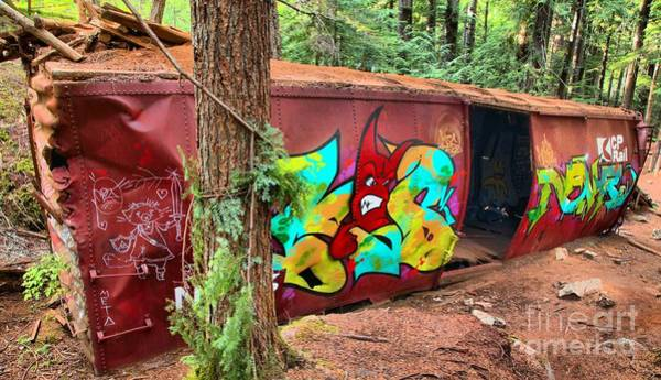 Photograph - Abandoned British Columbia Box Car by Adam Jewell
