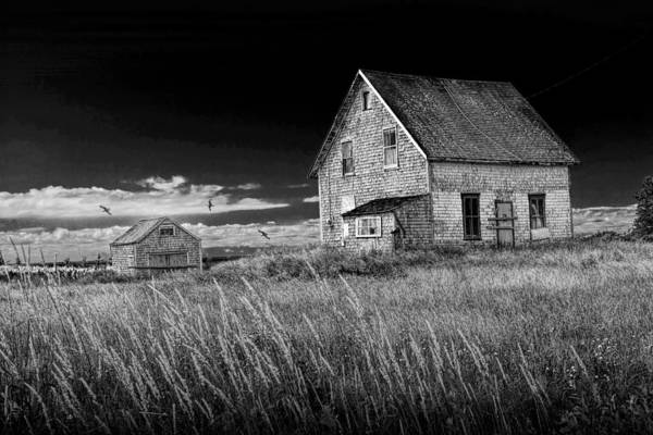 Photograph - Abandoned Buildings On Pei by Randall Nyhof