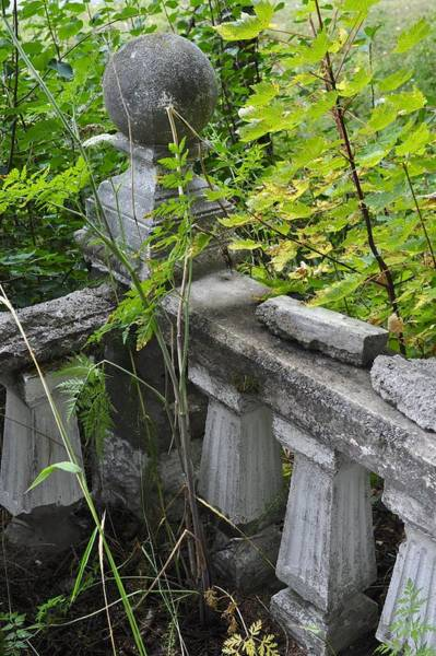 Haines Falls Photograph - Abandoned Cemetery by Cathy Mahnke
