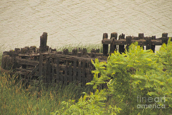 Photograph - Abandoned Dock by William Norton