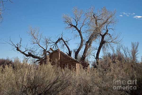 Photograph - Abandoned Farm House by Fred Stearns