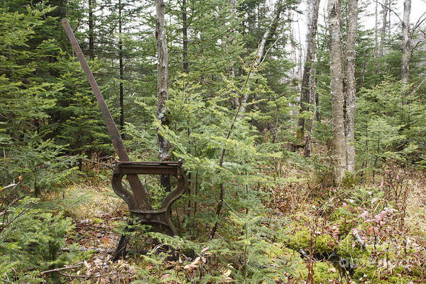 Photograph - Abandoned Harp Switch Stand - New England Usa by Erin Paul Donovan