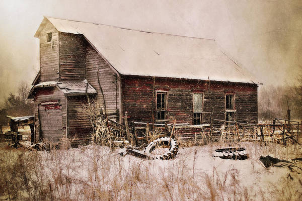 Barn Swallow Wall Art - Photograph - Abandoned by Julie Hamilton