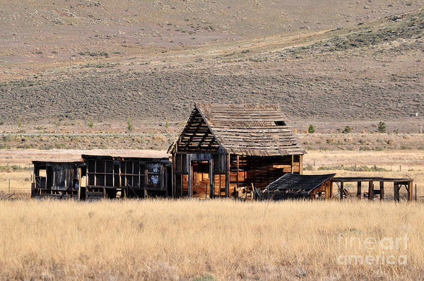 Photograph - Abandoned Ranch by Lula Adams