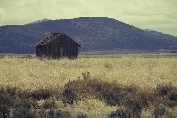 Photograph - Abandoned by Sherri Meyer