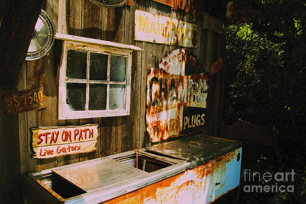 Photograph - Abandoned Soda Cooler by William Norton