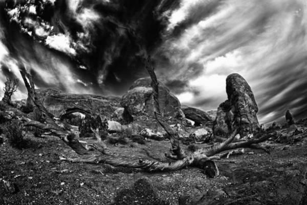 Wall Art - Photograph - Abandoned Tree by Juan Carlos Diaz Parra
