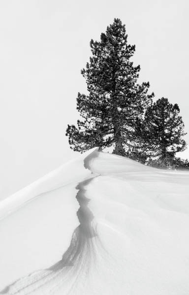 Mountain Trail Wall Art - Photograph - About The Snow And Forms by Rodrigo N??ez Buj