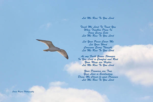 Digital Art - Above The Clouds by Lorna R Mills DBA  Lorna Rogers Photography