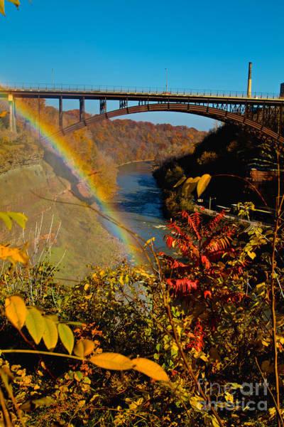 Bill Norton Wall Art - Photograph - Above The Falls by William Norton