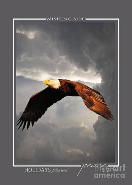 Photograph - Above The Storm Bald Eagle Christmas Cards by Jai Johnson