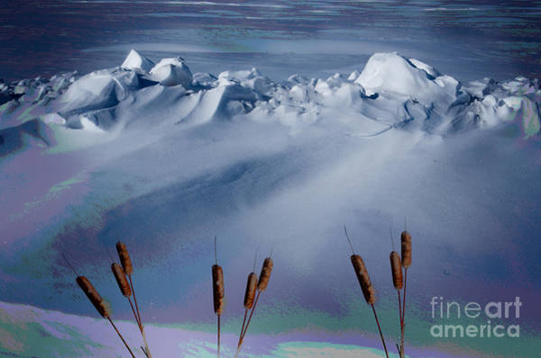 Wall Art - Photograph - Above The Tree Line by The Stone Age