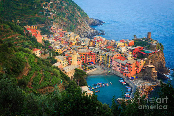 Italian Wine Photograph - Above Vernazza by Inge Johnsson