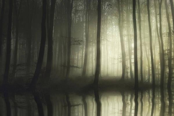 Haze Wall Art - Photograph - Absolute Silence by Norbert Maier