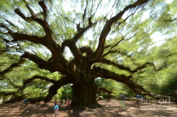 Photograph - Abstract Angel Tree by Randy J Heath