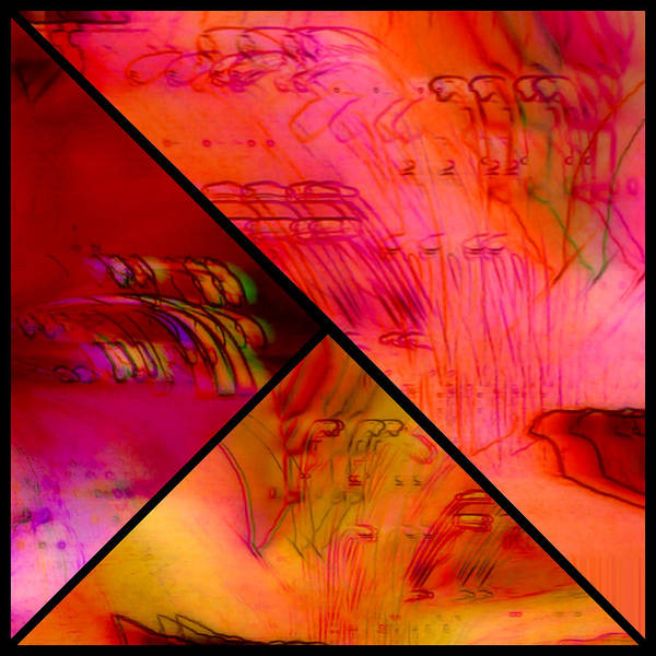 Photograph - Abstract Azalea Triptych Collage by Susan Maxwell Schmidt