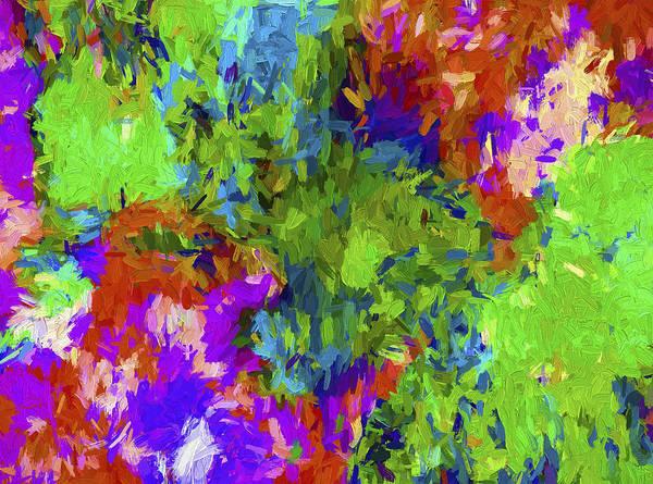 Digital Art - Abstract Series B3 by Carlos Diaz
